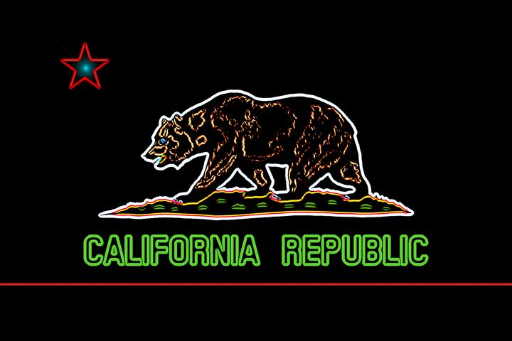 Neon California Flag - Brian Bula