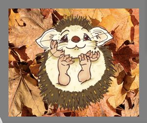 Hedgehog in the Autumn