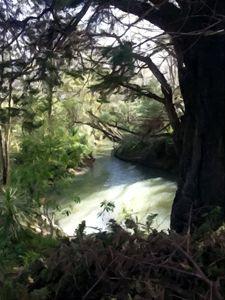 Karamatura Stream