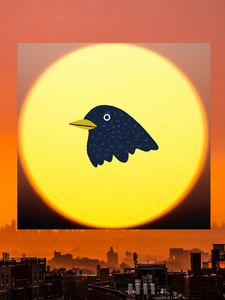 Sun over the city with bird image - Super art