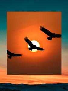 Sunrise with flying birds