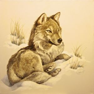Wolf in Snow   30x30, 1983, $8