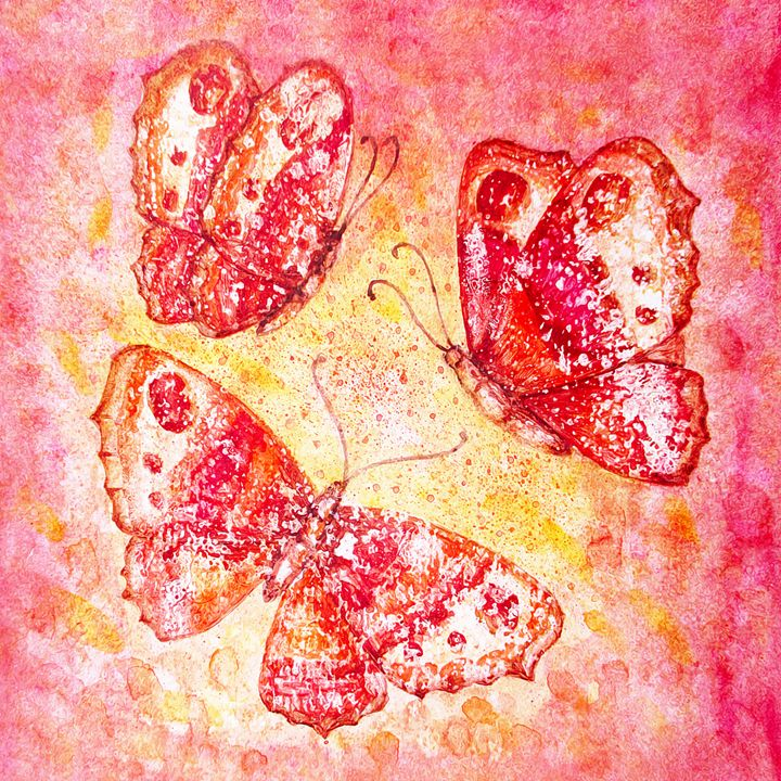 Butterflies in pink and yellow - Julia Gogol Art