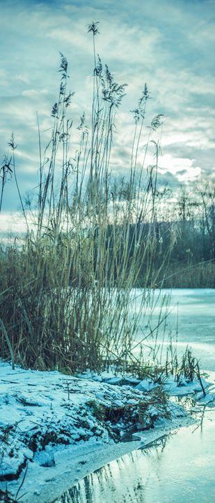 Winter evening on the river - Julia Gogol Art