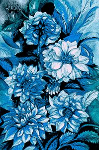 Chrysanthemums in blue