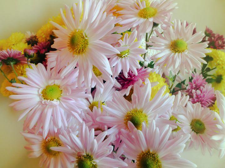 Bouquet of daisies - Julia Gogol Art