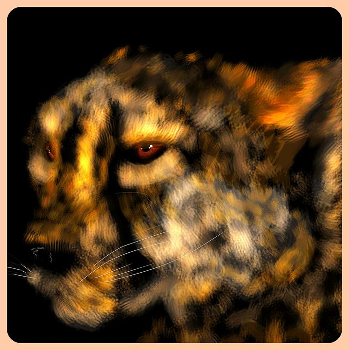Cheetah - Ashley Hawkins