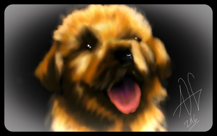 Golden puppy - Ashley Hawkins