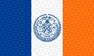 New York City Graphism Flag