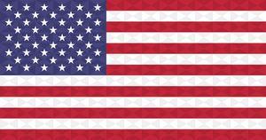 American Geometric Graphism Flag