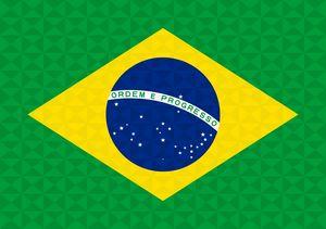Bandeira Brasil Grafismo Geométrico