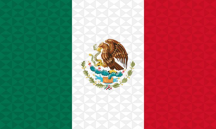 Bandera Mexico Grafismo Geometrico - Dan Duarte