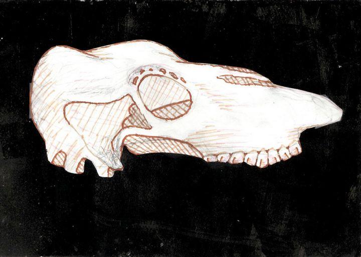Skull - Teresa Junge