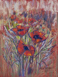 Poppies - Joan Hammond