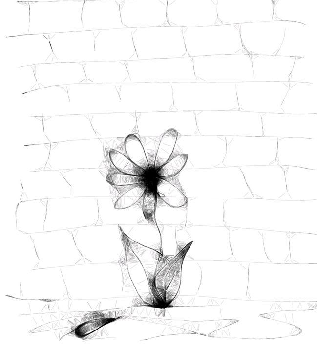 Behind the Wall - Bigblueyeseall