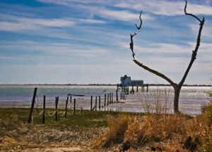 Old Hunting Shack on the Bay