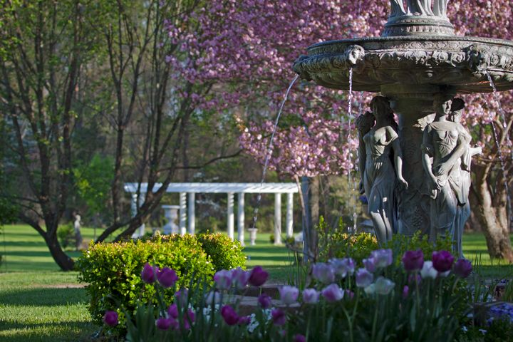 Fountain and Flowers in Spring - Peaceful Prints & Wall Murals