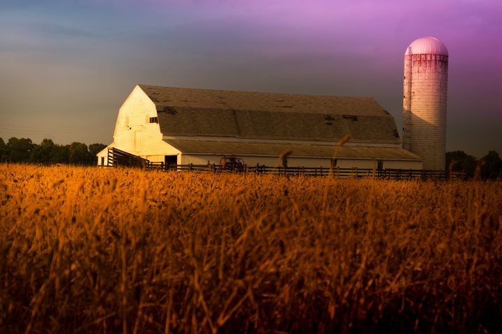 Nostalgic Dairy Barn and Silo Sunset - Peaceful Prints & Wall Murals