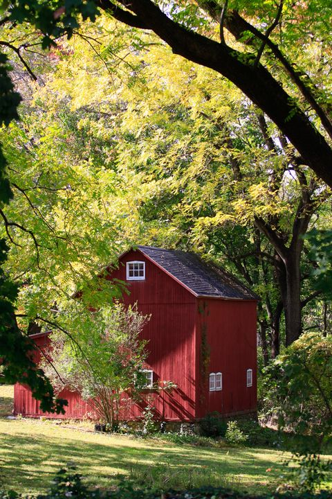 Red Barn in Early Spring - Peaceful Prints & Wall Murals