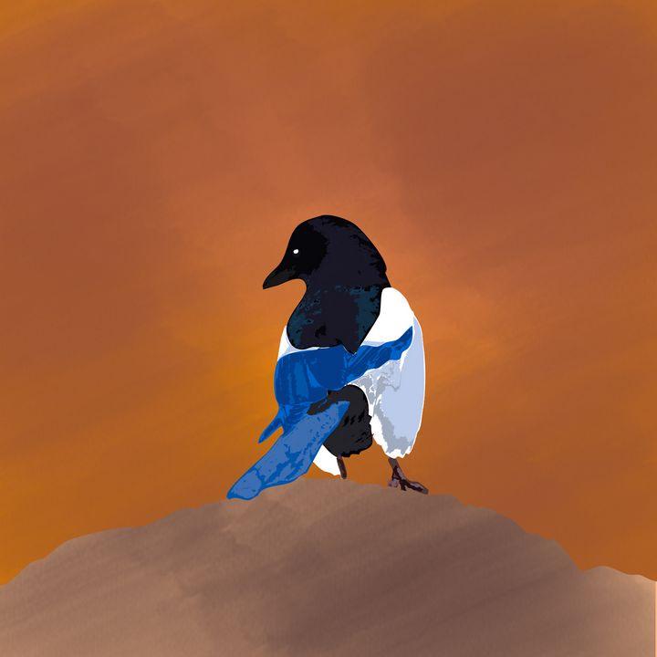 eurasian magpie - Nesland