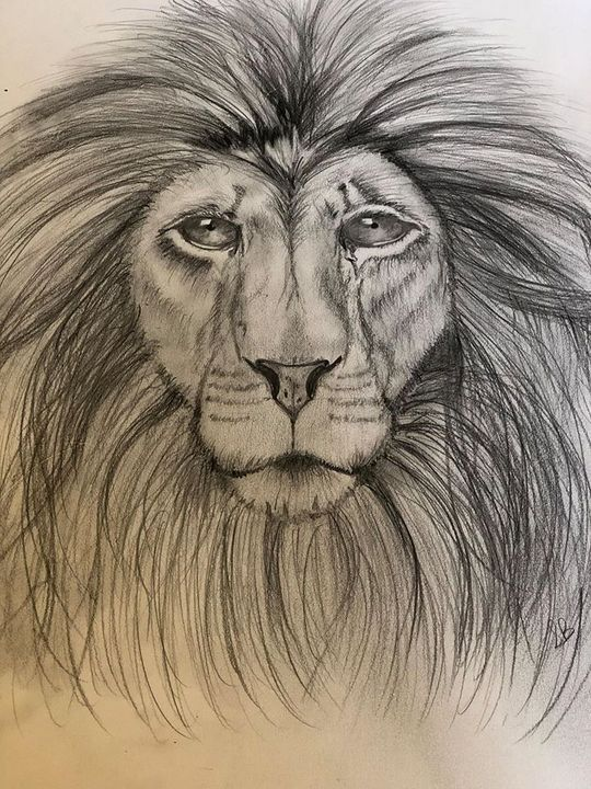 Lion - Vivid Art