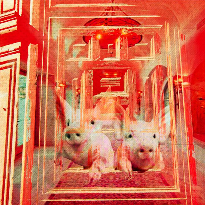 Pigs in the Palace - Laura Conroy Abstract Artist