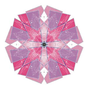 Holiday Carnation Snowflake - Symmetry Art