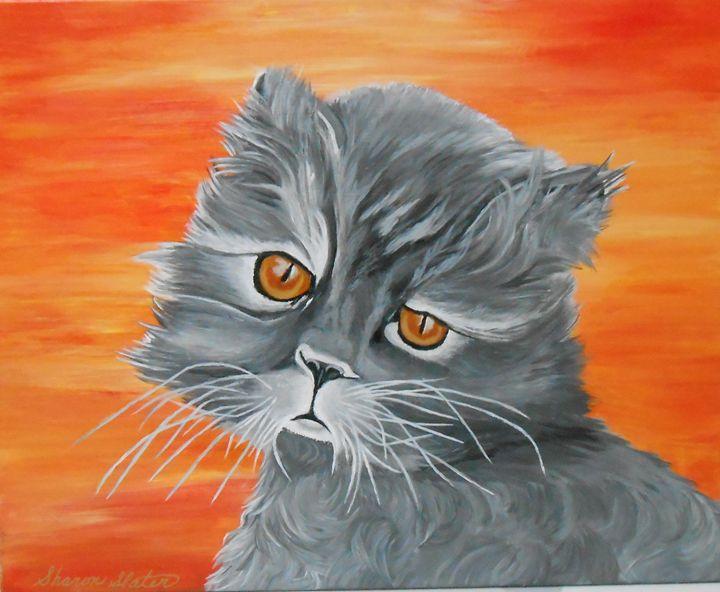 DREAMY EYES PERSIAN CAT - Sharon Slater