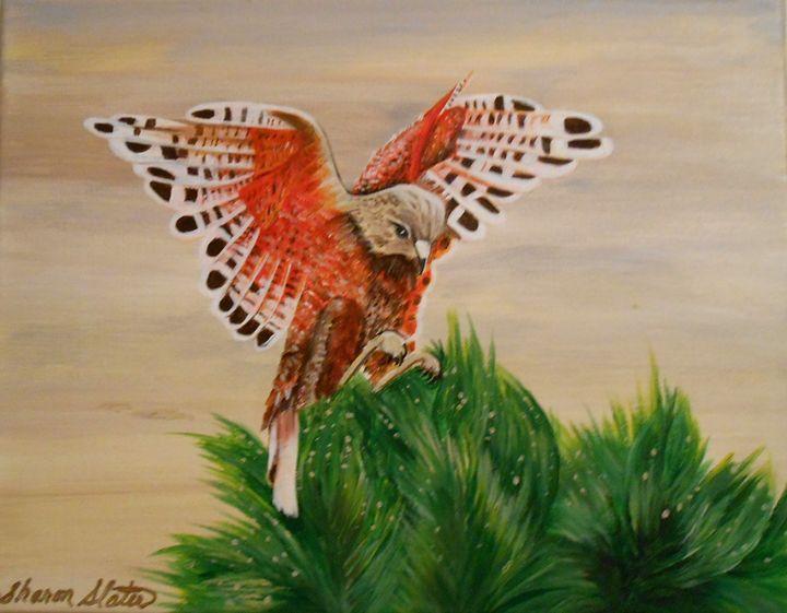Landing bird - Sharon Slater