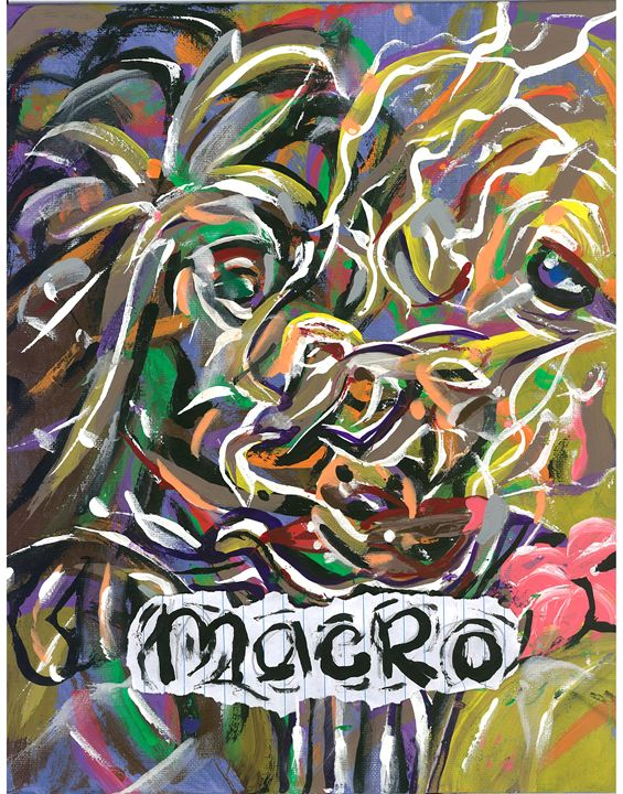macro reid - amazon web art