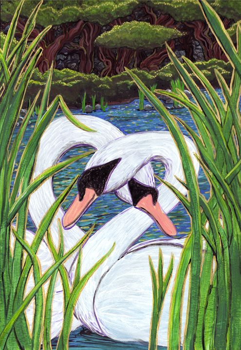 Swans Hello - Wendy Crouch