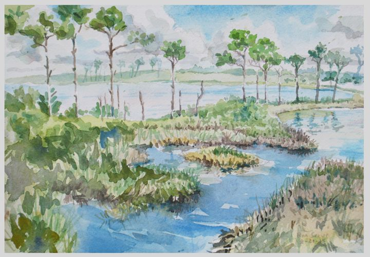 Bon Secour Trail Alligator lake - Zaplatar Art