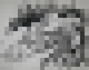 Erin Nude reclined - Zaplatar Art