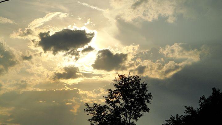 evenings sun - jamie-art