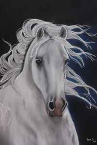 WHITE ARABIAN BEAUTY - DREAMZ-ART