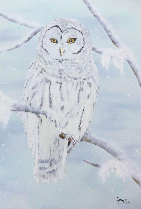 SNOWY OWL IN WINTER - DREAMZ-ART
