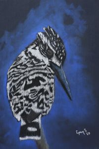 PIED KINGFISHER - DREAMZ-ART
