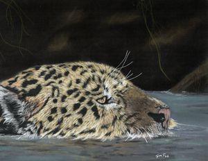 Leopard Swimming;  Original Piece