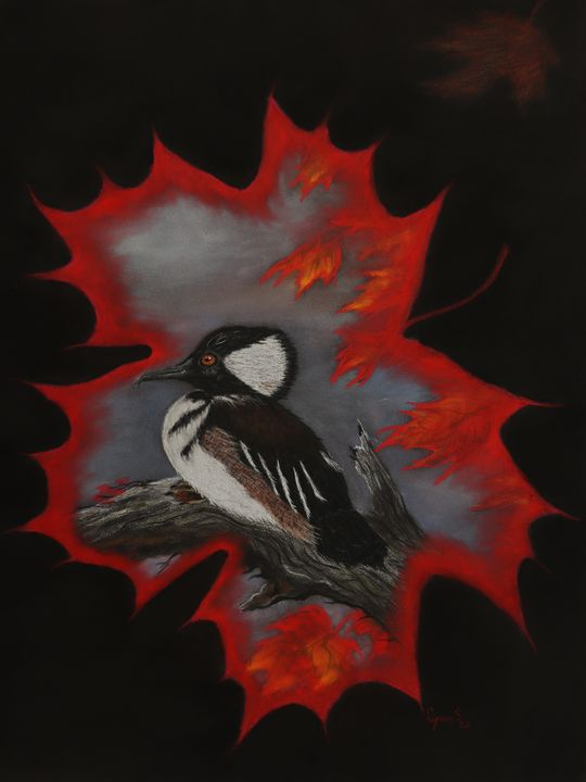 HOODED DUCK; Fine art - DREAMZ-ART