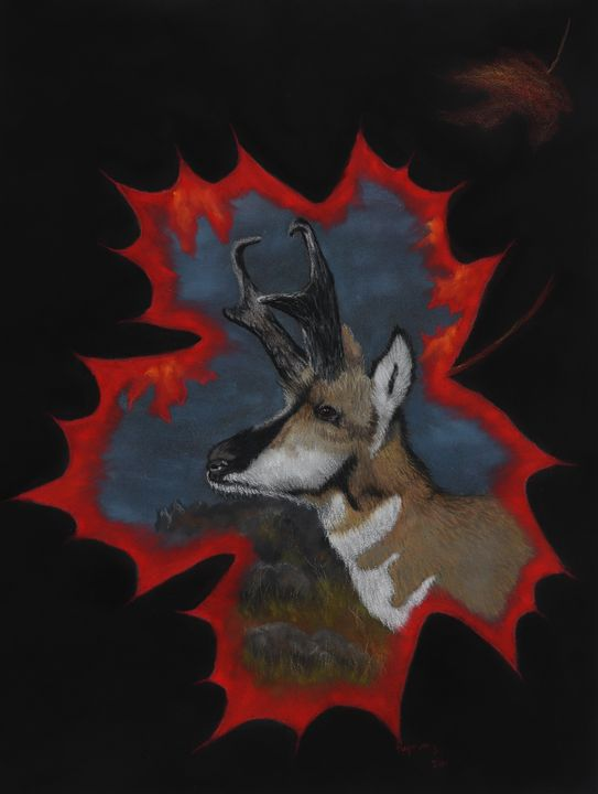 PRONGHORN; Fine Art - DREAMZ-ART