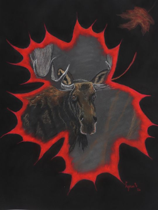 MOOSE; Wildlife Fine Art - DREAMZ-ART