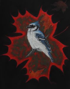 PURELY CANADIAN; BLUE JAY fine art.