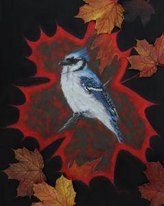 REALLY CANADIAN BLUE JAY fine art.
