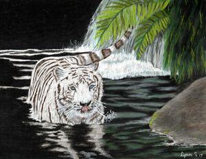 WHITE TIGER SWIMMING - DREAMZ-ART