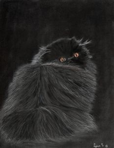 BLACK PERSIAN KITTEN - DREAMZ-ART