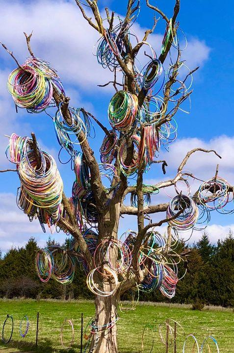 Hula Hoop Tree of Iowa - Her Majesty of Iowa