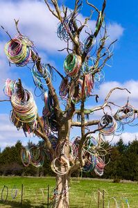Hula Hoop Tree of Iowa