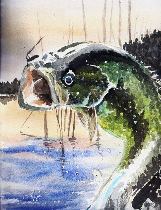 That's a Great Bass - Anne's ARTS