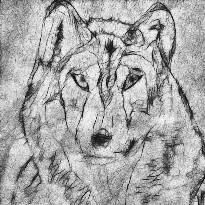 tribal wolf - NikoGraphy