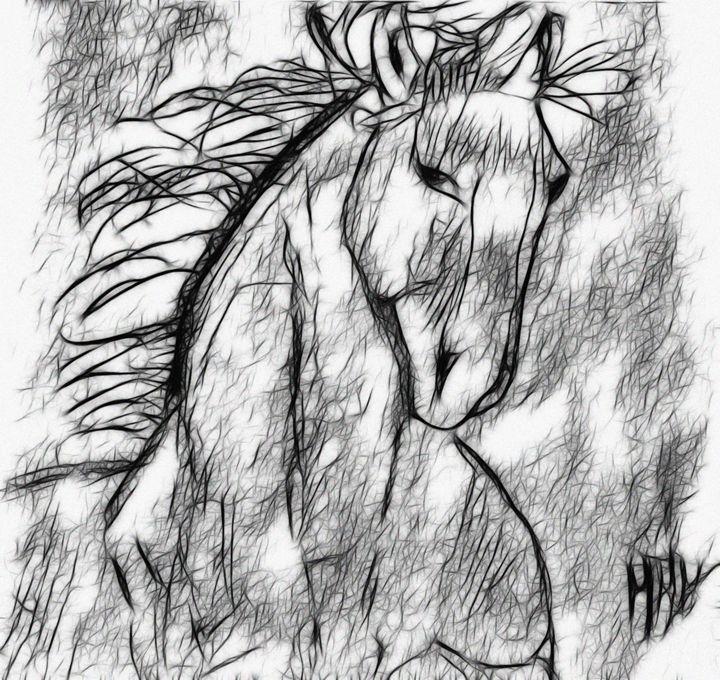 tribal horse - NikoGraphy